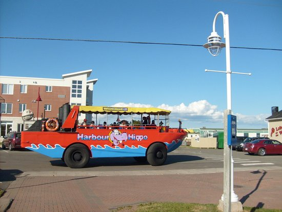 A city sightseeing bus in front of Founders' Hall