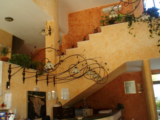 Hotel Paraiso Playa : hotel
