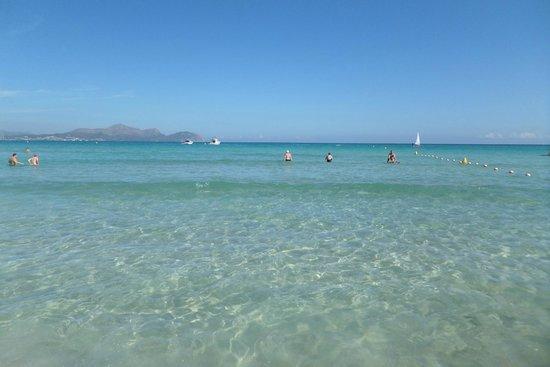 Playa de Muro - Picture of Playa de Muro Beach, Playa de Muro - TripAdvisor