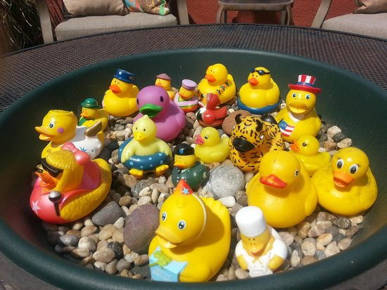 Bayfront Inn: Rubber Duckies in the outdoor seating area. Cute!