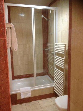 Suisse Hotel: badrum (dusch)
