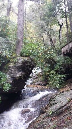 Dukes Creek Falls Trail: View from deck