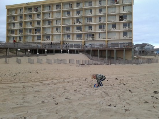 Comfort Inn South Oceanfront : the hotel from the beach