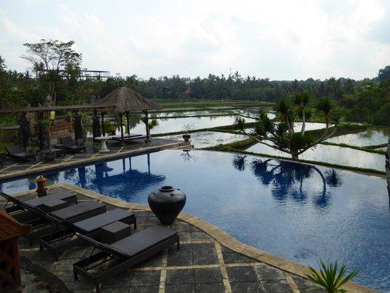 Bumi Ubud Resort: View from pool