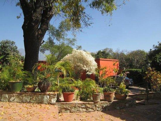 Casa Panchita: Garden Area