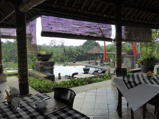 Bumi Ubud Resort: View from restaurant