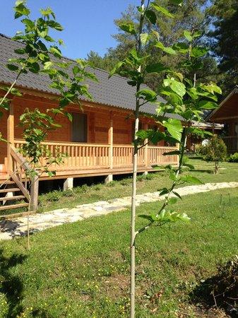 Olympos Village: kutuk ev