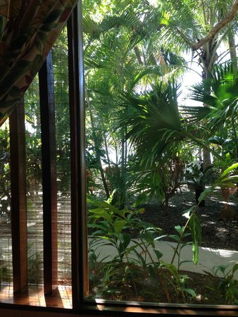 Fenix Hotel - On The Beach: view from our room