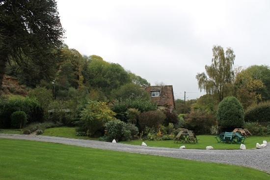 Combe House Hotel: garden