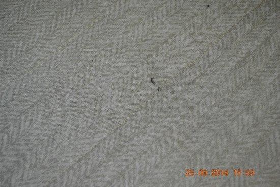 Grand Mercure Azure Sea : roupa de cama sem condições de uso