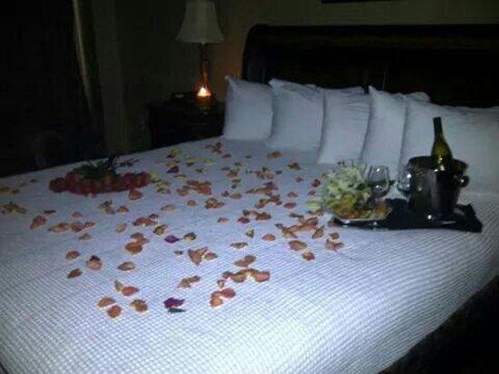 Carnegie Hotel: Comfy beds