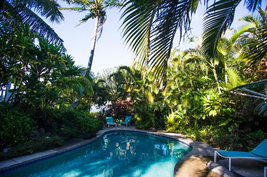 haleakala cottage cool off in our spectacular jungle pool - Cool Pools With Caves