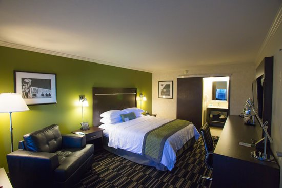 Wyndham Garden San Jose Airport: Standard king room
