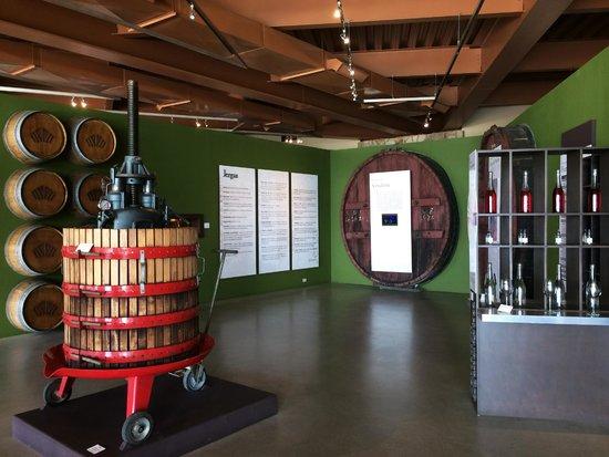 Museo de la vid y el vino: Wine Museum