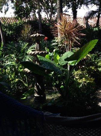 The Garden Cafe : Garden courtyard