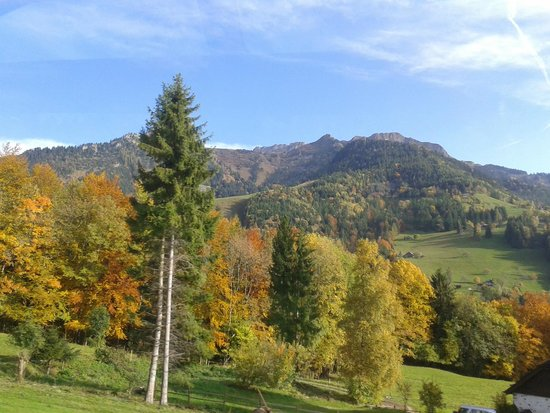 Hotel Roc et Neige: View from the train on the way up to Chateau D'oex. Stunning Autumn colours!