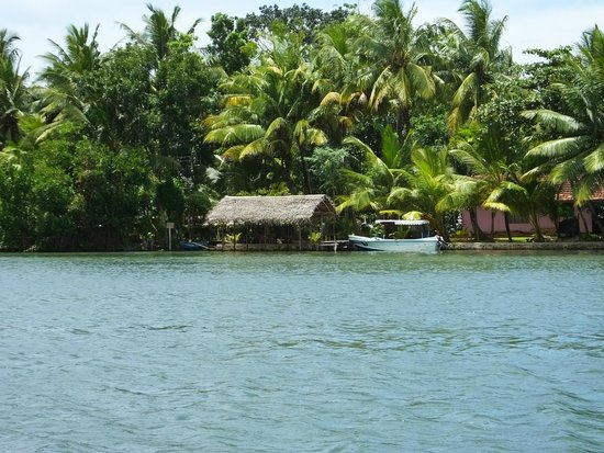 Lagoon Herbal Garden: Island View..!