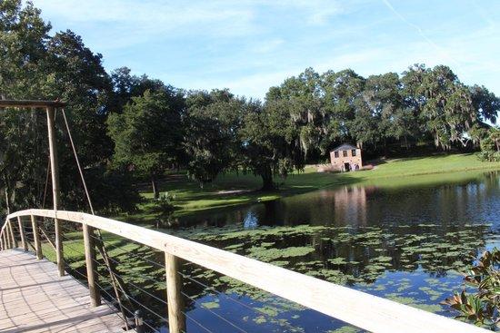 Middleton Place: Mill Pond Bridge 2