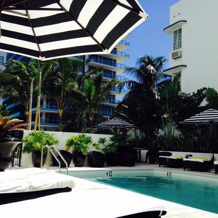 Hotel Croydon: Pool Area