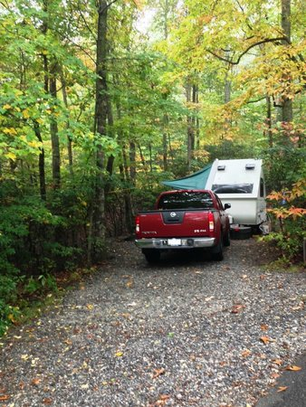 Ash Grove Mountain Cabins & Camping: Techno Site 1