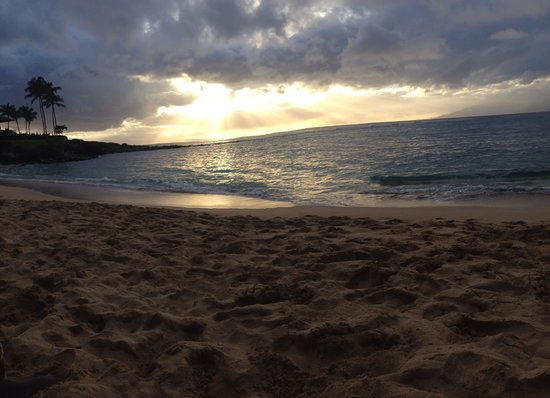 Napili Point Resort: Kapalua Beach - Ten minute walk.