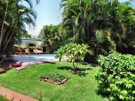 Hotel La Rosa de America: View from the room towards pool and restaurant