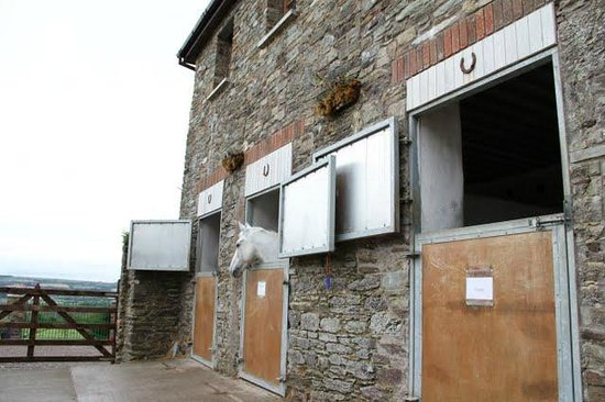 Monkstown, Irland: Stables