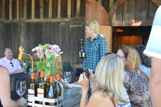 Dry Creek Valley Wine Tours: Mounts Family Winery