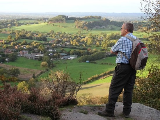 Sandstone Trail: A view at Bickerton Hill