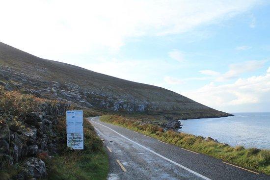 Cullinan's Guesthouse: Burren