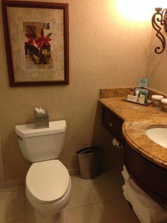 Hilton Lisle / Naperville: Bathroom