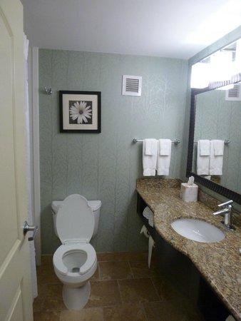 Anderson, Carolina del Sud: bathroom