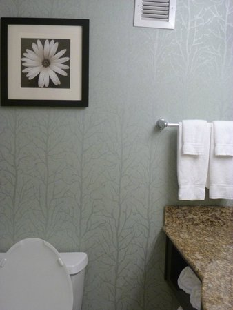 Anderson, Carolina del Sud: Nice wallpaper!