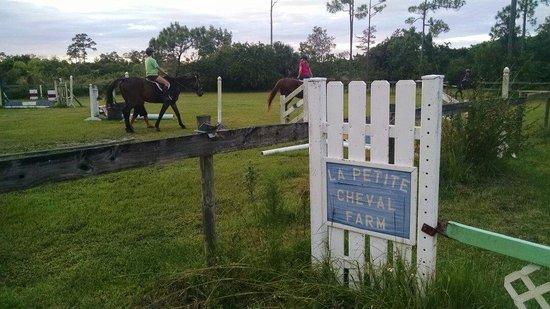 Loxahatchee, FL: Jumping arena.