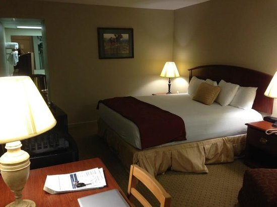 Inn of the Hills Hotel & Conference Center: Bedroom as viewed from the door
