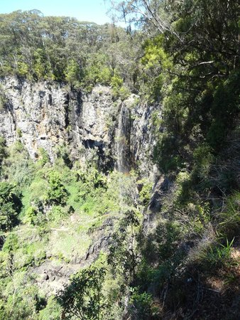 Springbrook, Avustralya: Purling Brook Falls - almost dry