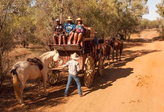 Longreach, Australia: In the scrub