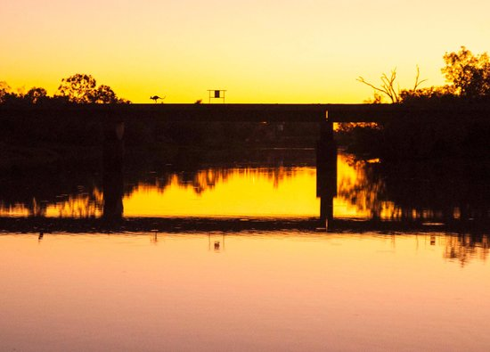 Longreach, Australia: Kangaroo on bridge sunset tour
