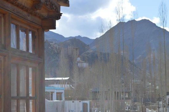Glacier View Guest House : Vista desde el balcón hacia Leh.
