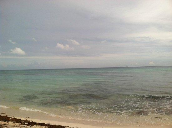 Petit Lafitte: Ocean...