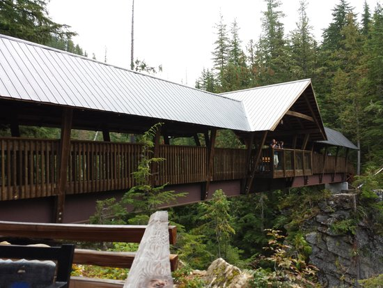 Nakusp Hot Springs: Bridge over Kuskanax Creek
