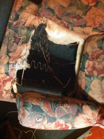 Royal Inn Dallas NW: disgusting