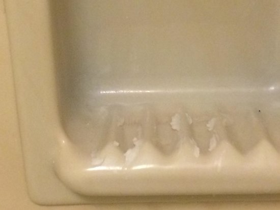 Red Roof Inn Wilmington: Soap scum and pieces in the shower soap dish.....