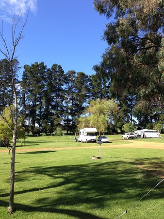 Fonty's Pool, Chalets & Caravan Park: View from my camper