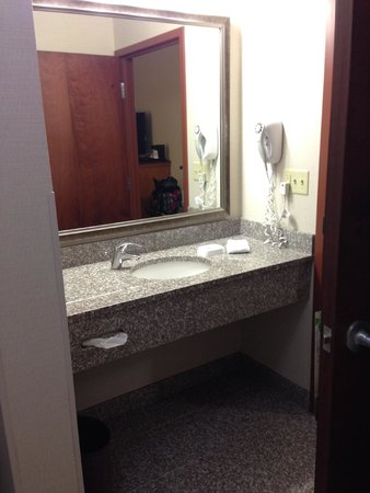 Bathroom Sinks Orlando bathroom sink - picture of drury inn & suites orlando, orlando