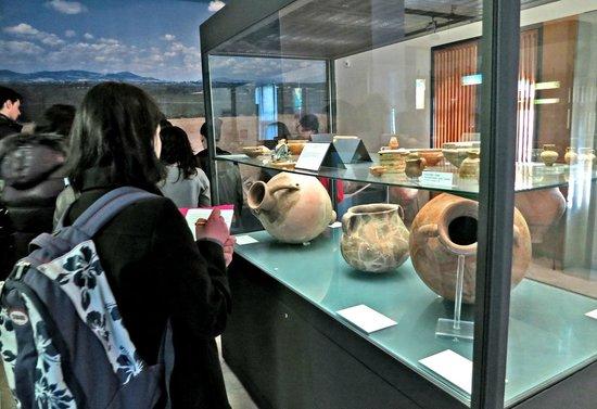 Policoro, Italia: museo