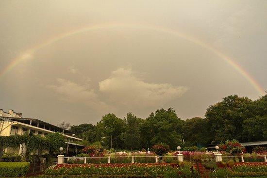 Green Hotel: Rainbow