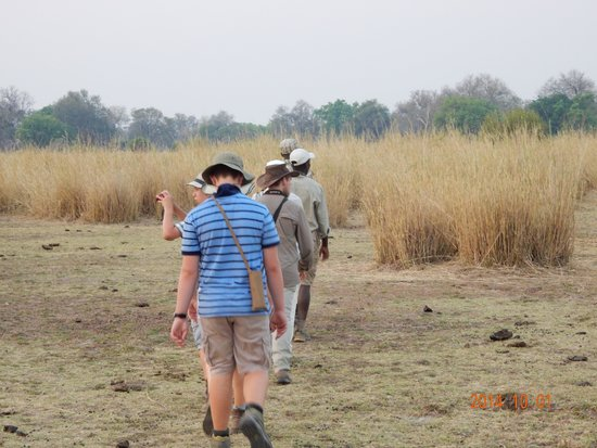 Chikoko Trails Camps: Single file for walking