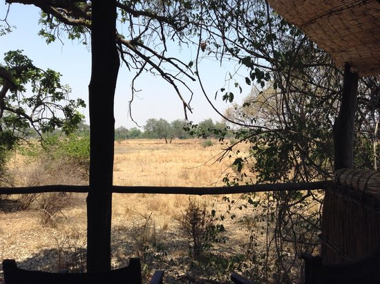 Chikoko Trails Camps: view from our bed - doesn;t get much better than this