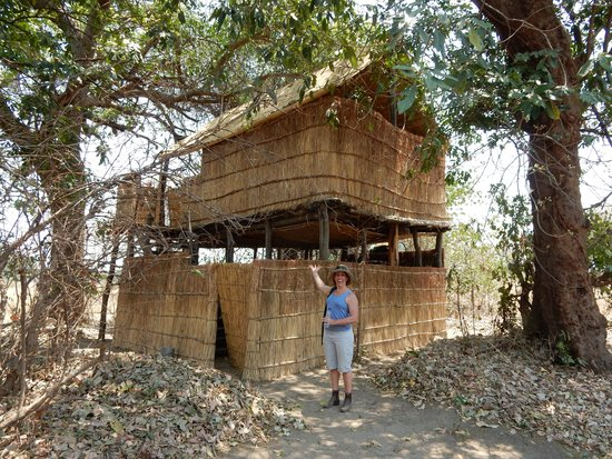 Chikoko Trails Camps: our home for 2 nights